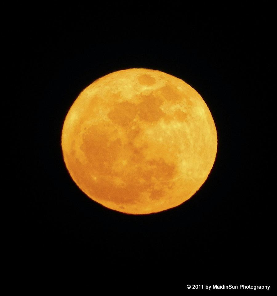 Back Nature Harvest Moon