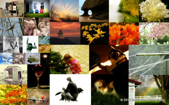 2012Collage1