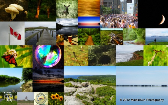 2012Collage2