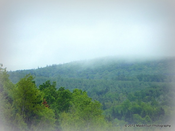 Fog and mist on the Sunrise Trail.  Nova Scotia.  June 2012.