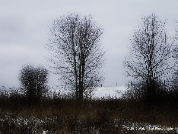December 2012 016a