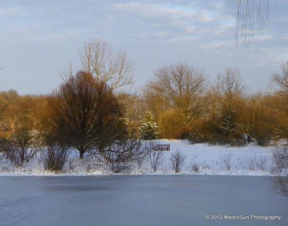 December 2012 039a