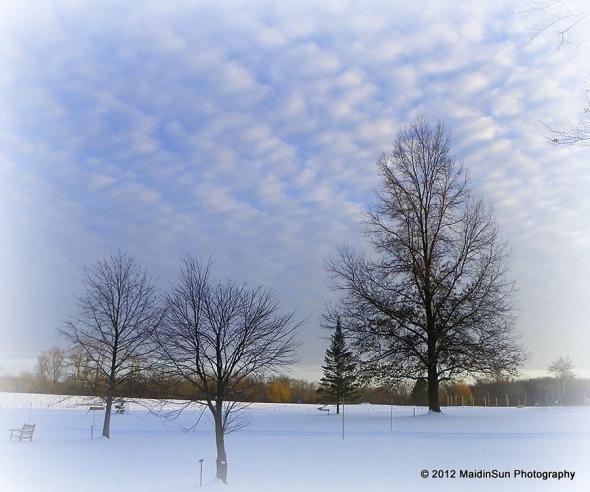 December 2012 042a