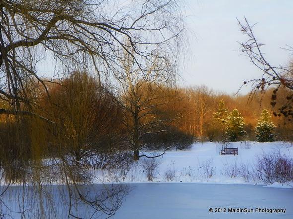 December 2012 043a