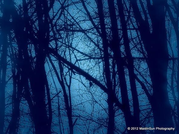 Early morning imitating moonlight