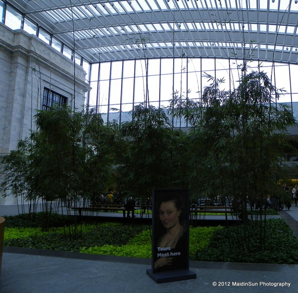 In the new atrium at the Cleveland Museum of Art