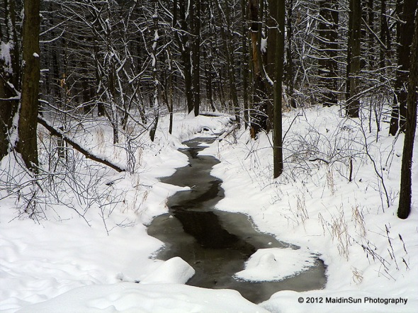 A creek in the woods at Quail Hollow State Park for those who prefer the nature and snow images.