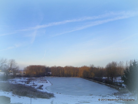 This morning's view of the pond.  It got down into the 20's last night so the surface was once again covered with ice.