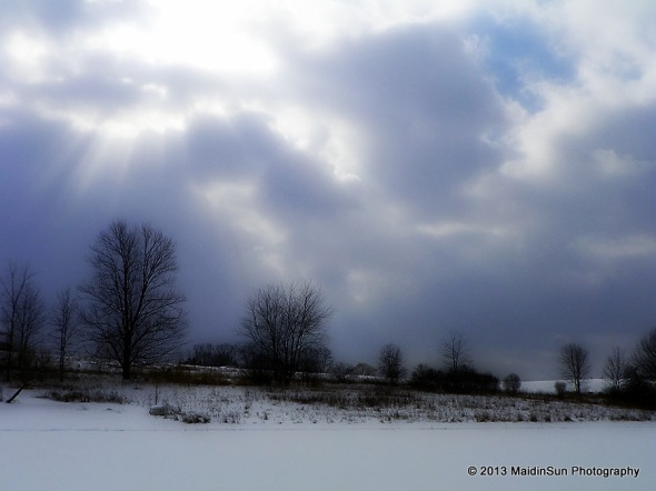 Saturday's view of snow and sun and clouds and pond and trees.