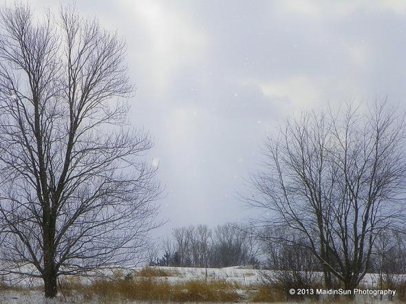Beautiful snowfall on Saturday.