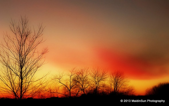 Sunset yesterday.  It reminds me of sherbet.