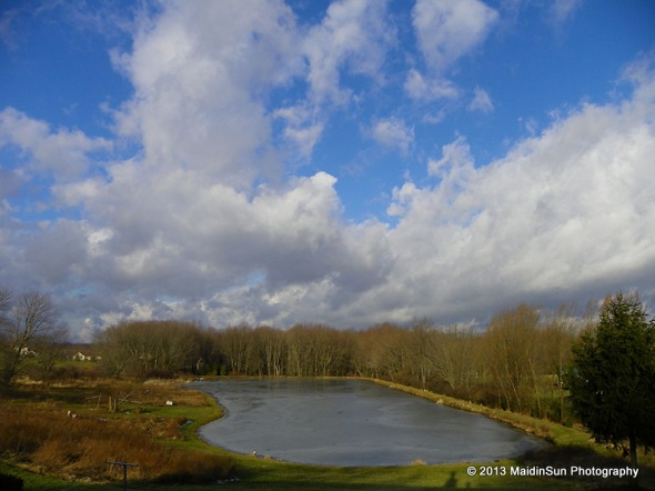 Today's big view of the pond