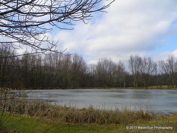 It is still winter on the pond