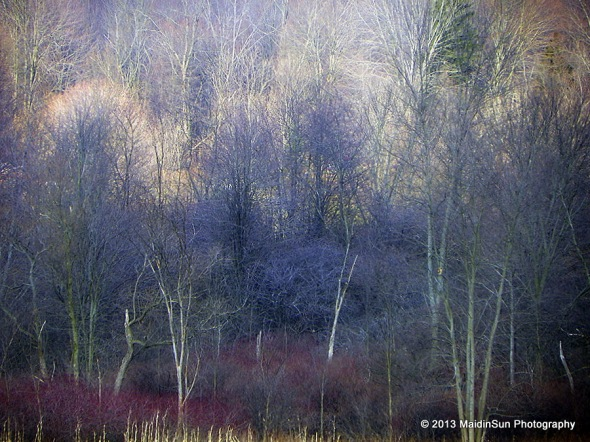 Mother Nature creates her own impressionist paintings