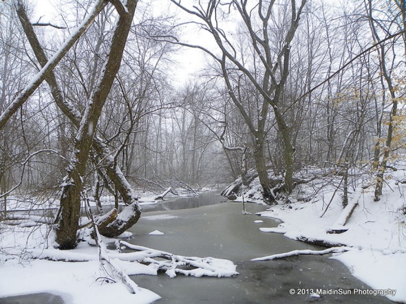 The creek on this snowy day