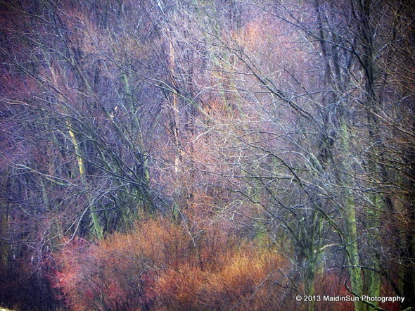 Spring emanations