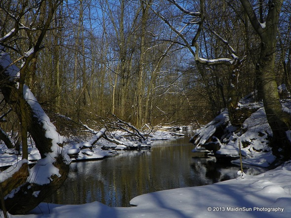 Today's view of the creek