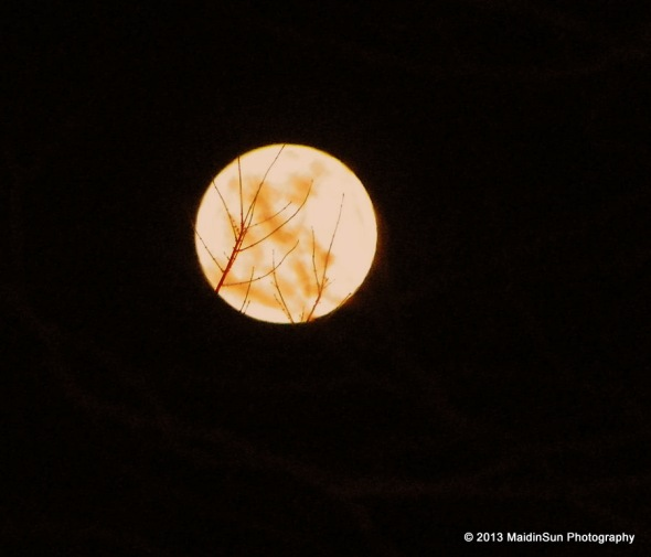 Moon When the Trees Pop (Dakotah Sioux name for the February full moon)
