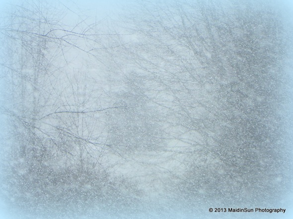 January 2013 020a