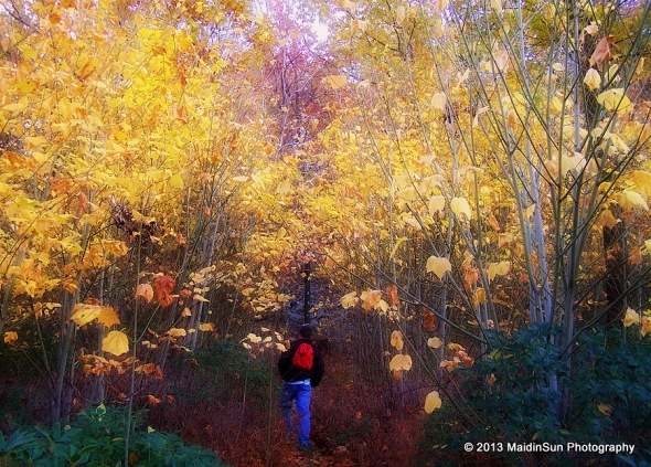 An autumn hike.  2006.