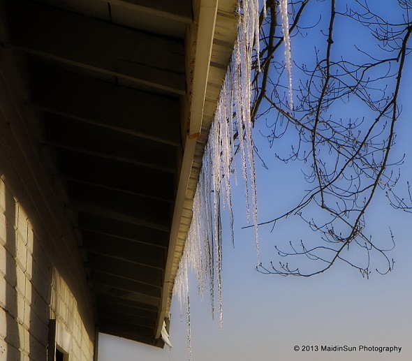 Icicles hanging from the barn roof